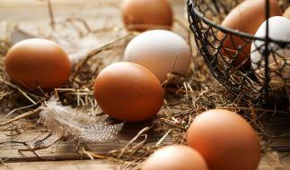 Edeka ruft aktuell Eier zurück. (Foto)