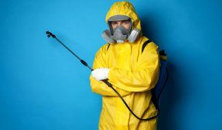 Droht uns nun eine weltweite Pest-Epidemie? (Foto)