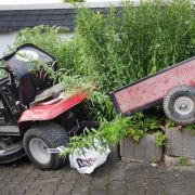 Junge (12) stürzt mit Rasenmäher-Traktor in den Tod (Foto)
