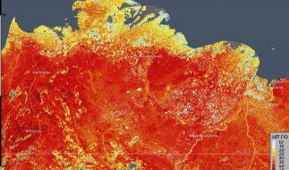 In Sibirien ist es aktuell ungewöhnlich heiß. (Foto)