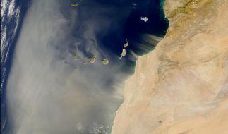 Aus der Sahara: Eine riesige Staubwolke bewegt sich auf den Atlantik zu. (Foto)