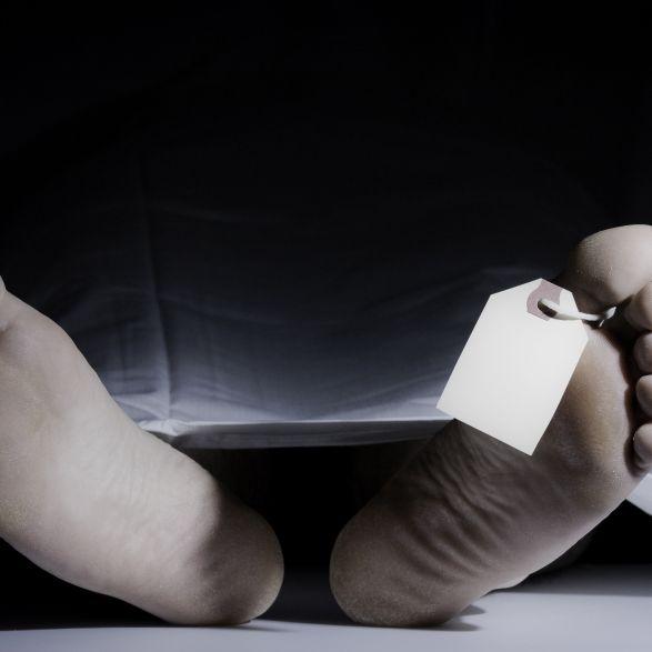 Junge stirbt an Beulenpest! Kehrt der Schwarze Tod zurück? (Foto)