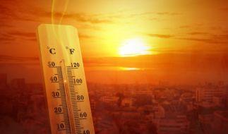 Einen Hitze-Sommer 2020 wird es in diesem Jahr wohl nicht geben. (Foto)