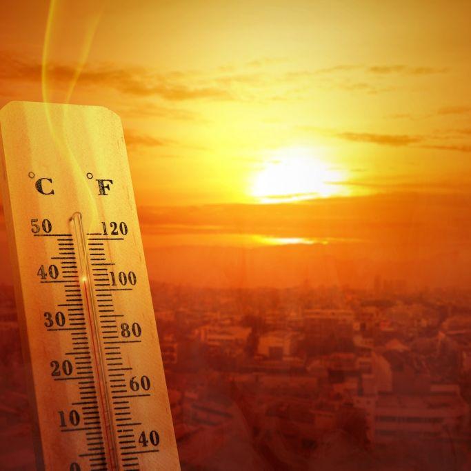 Wie heiß wird der Sommer wirklich? Meteorologen klären auf (Foto)