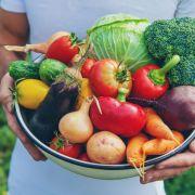 Achtung, giftig! DIESE Lebensmittel können tödlich sein (Foto)