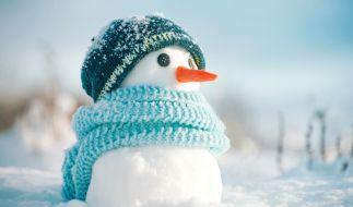 Wie kalt wird der Winter 2020/21? (Foto)
