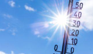 Das Quecksilber soll in dieser Woche bis auf 37 Grad klettern. (Foto)