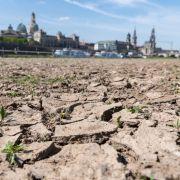 Viel zu trocken! Meteorologen warnen vor Dauer-Hitze (Foto)