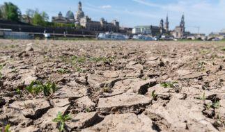 Der Juli zeigte sich vielerorts viel zu trocken. (Foto)