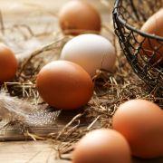 Vorsicht, Gesundheitsgefahr! Real und Hit rufen aktuell Eier zurück (Foto)