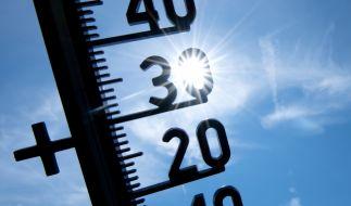 Schwitzen ohne Ende: Die Sommerhitze bleibt Deutschland auch in der neuen Woche erhalten. (Foto)