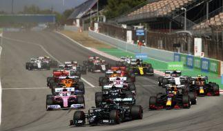 Hamilton raste beim Großen Preis von Spanien erneut zum Sieg. (Foto)