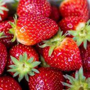 Lebensgefährlicher Genuss! Nadeln in Erdbeeren gefunden (Foto)
