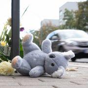 Todesraser festgenommen! Warum musste der 6-Jährige sterben? (Foto)