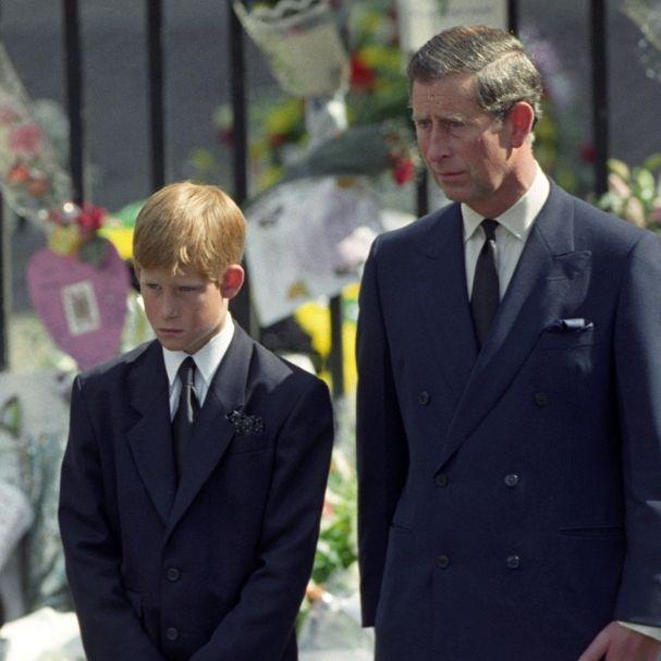 Diesen letzten Wunsch für Lady Di verweigerte Prinz Charles seinem Sohn (Foto)