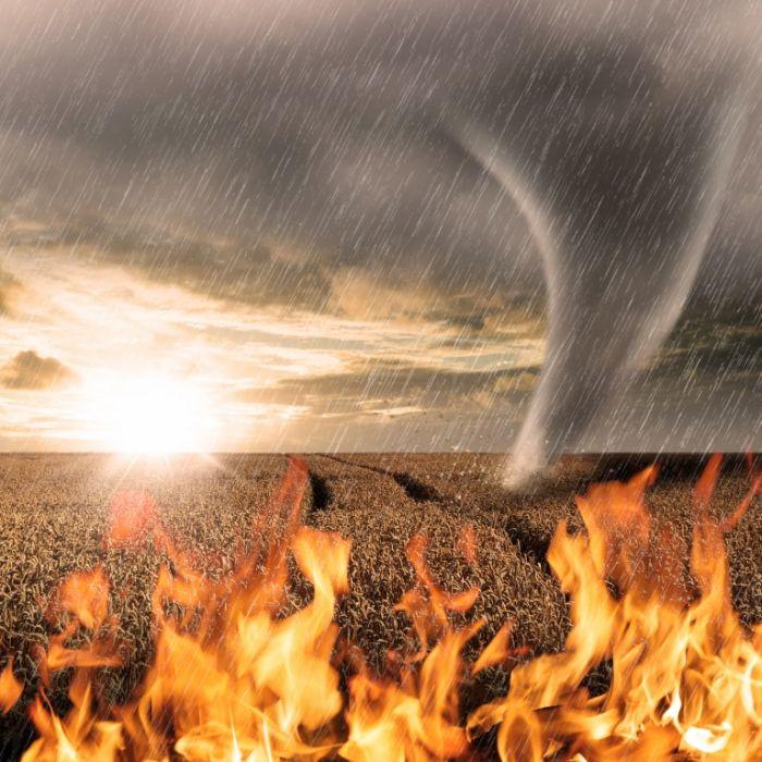 Hochwasser und Feuer-Drama! In DIESEN Ländern herrscht Ausnahmezustand (Foto)