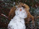Steht uns im Herbst 2020 ein früher Wintereinbruch bevor? (Foto)