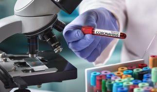 Die aktuellen Coronavirus-News aus Deutschland und der Welt auf einen Blick. (Foto)
