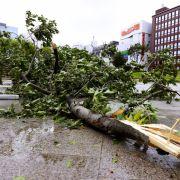 Strommasten umgeknickt, Straßen überflutet! Unwetter verwüstet Asien (Foto)
