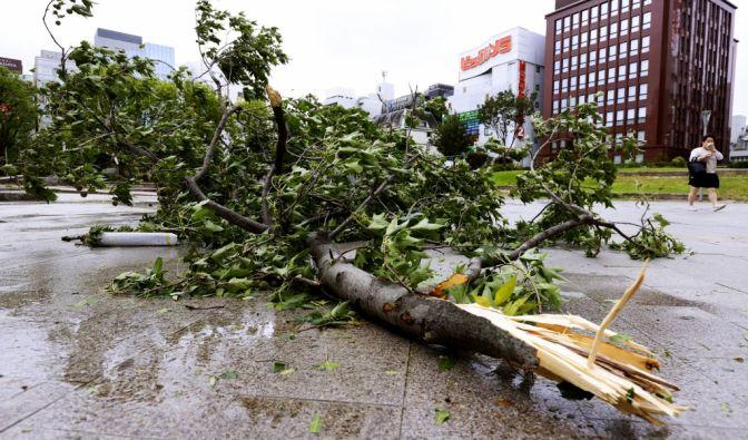 Taifun über Japan und Südkorea