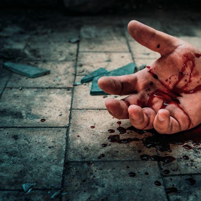 Mann streamt Suizid live ins Netz,Tierhasser verstümmelt Pferde (Foto)