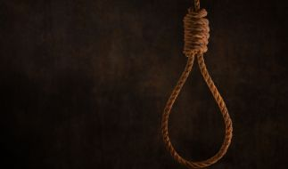 Ringer Navid Afkari wurde hingerichtet. (Foto)