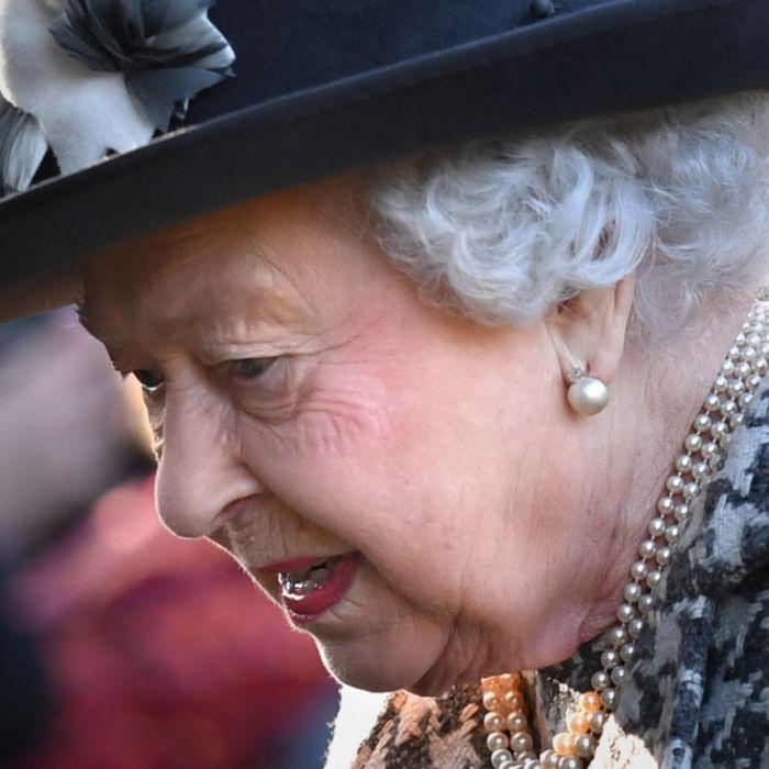 Queen trauert! Königin weint um ihre Lieblinge (Foto)