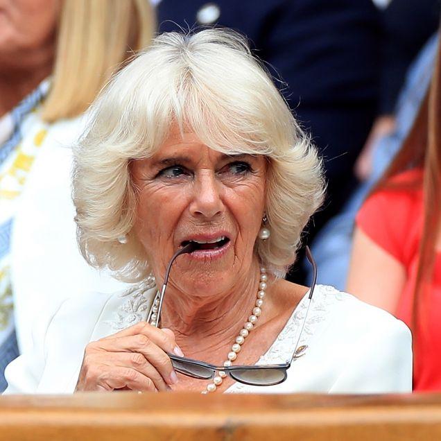 Ohne Prinz Charles ist Herzogin Camilla machtlos (Foto)