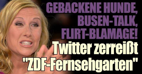 """""""ZDF-Fernsehgarten"""" in der Twitter-Kritik: Gebackener Hund im Live-TV! Andrea Kiewel schockt ihr Publikum"""