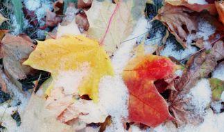 Droht uns bereits im Oktober ein eisiger Wintereinbruch? (Foto)