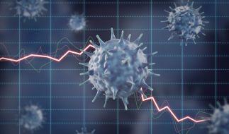 Ein Amtsarzt hat das Coronavirus mit der Grippe und Hitzewelle verglichen. (Foto)