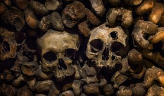 Die Leiche des Models wurde in einem Massengrab entdeckt. (Foto)