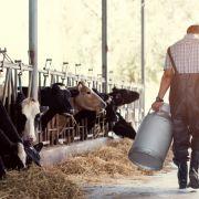 Krankes Bauern-Trio missbraucht eigene Nutztiere über 730 Mal (Foto)
