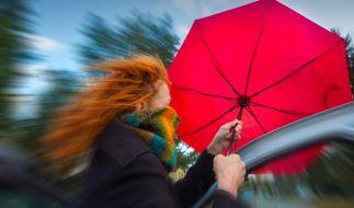 Die News des Tages am 17.10.2020: Droht Deutschland ein neuer Herbststurm? (Foto)