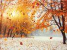 Wintereinbruch im November 2020