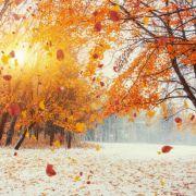 Schnee an Allerheiligen bis ins Flachland? DAS sagen Meteorologen (Foto)