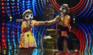 Stecken Daniela Katzenberger und Lucas Cordalis unter den Erdmännchen-Masken? (Foto)