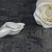 Herzinfarkt nach positivem Corona-Test! Soap-Star stirbt mit 78 Jahren (Foto)