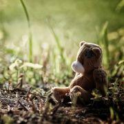 Mann (62) vergewaltigt Dreijährige in Park (Foto)