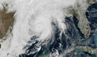 """Hurrikan """"Zeta"""" hat an der US-Golfküste für schwere Verwüstungen gesorgt. (Foto)"""