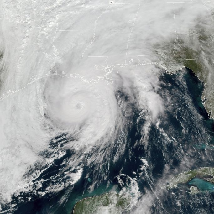 "Hurrikan ""Zeta"" verwüstet US-Küste - mindestens 6 Todesopfer (Foto)"