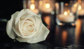 Die ehemalige Miss America, Leanza Cornett, ist überraschend gestorben. (Foto)