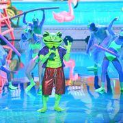 Komiker oder Sport-Star? DIESER Promi steckt im Frosch-Kostüm (Foto)
