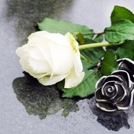 Trauer in Hollywood! US-Star (85) verliert Demenz-Kampf (Foto)