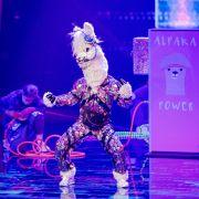 Maske gelüftet! DIESER Insta-Star steckt unter der Alpaka-Maske (Foto)