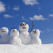 Schock-Prognose! Fällt der nächste Winter aus? (Foto)