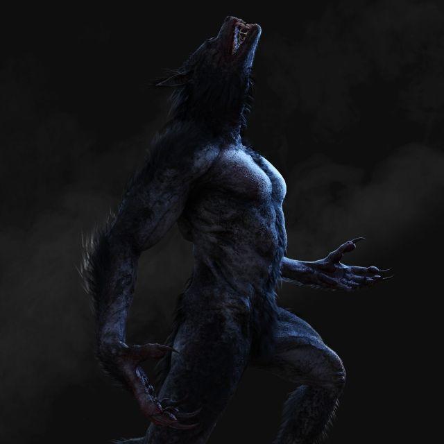 Mensch-Hund-Kreatur gesichtet! Treibt HIER ein Werwolf sein Unwesen? (Foto)