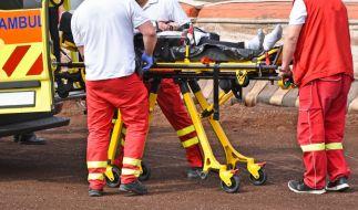 Sänger Buddy musste nach einer Verletzung gerettet werden. (Symbolfoto) (Foto)