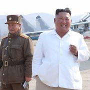 Irre Entdeckung! Will Nordkorea etwa bewaffnete Delfine in den Kampf schicken (Foto)