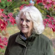 Heimliche Schönheits-OP! Für Prinz Charles legte sie sich unters Messer (Foto)